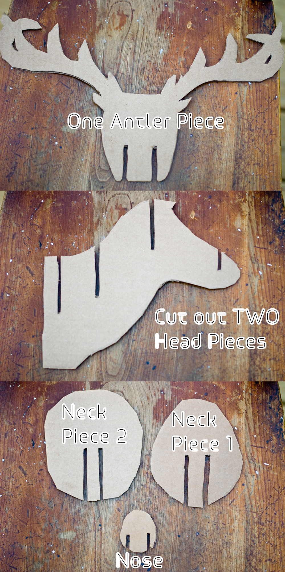 Teen diy diy faux taxidermy deer for Free cardboard taxidermy templates